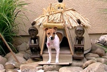 Ruby's Tiki Dog Hut / Building shelter in the yard for the puppy. The tiki thing is her idea. / by Heather Bee