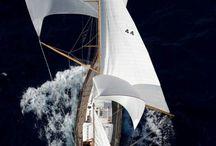 Sailings