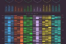 infographic & data visualization