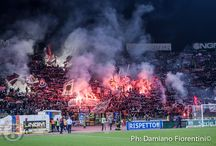 Bologna-Trapani 2-1 (Serie B 2014-2015)