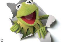Kermit / by Abby Berman