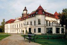 Wiejce - Pałac / Pałac w Wiejcach. Neobarokowy pałac z połowy XIX wieku. Obecnie mieści się tu luksusowy hotel i centrum konferencyjno-rekreacyjne.