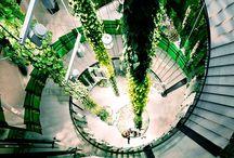 greenery in shopping mall