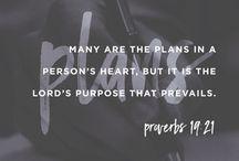 Yr 6 Proverbs