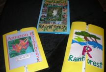 Rainforest Theme / Preschool, kindergarten, early elementary theme / unit curriculum, crafts, songs, finger plays, printables, games, math, science, ideas. See also Zoo, Habitats.