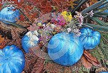 Stock images seasons, fauna, flora