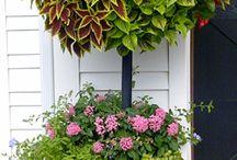 Garden - container