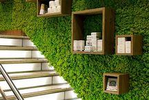 Greenwall / Wandbekleding dmv mos of planten. Een echte eyecatcher en super voor de akoestiek in een ruimte.