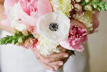 wedding flowers / by Emily Hughes