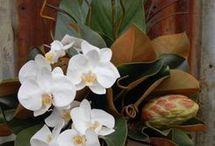 composizioni fiori natale