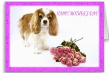Mother's Day Gift Board / Here are some great Mother's Day gifts that are my designs from Zazzle!