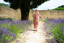France Lavender Route