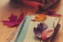 Herfst / Herfst herfst wat heb je te koop? Niet alleen de mooie gekleurde bomen zijn niet te missen maar ook de gezelligheid in huis mag weer van de zolder gehaald worden. Warm en knus terwijl het buiten waait en regent.