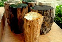 Petrified Wood Stumps / The world's most amazingly beautiful petrified wood stumps for home furniture decoration.