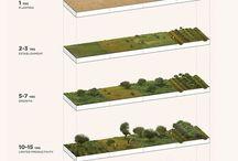 Workshop paysage