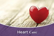 Heart Care / Norton Healthcare's Heart Care provides comprehensive care for heart disease prevention, diagnostic tests and scans, treatment options and emergency services.