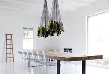Great hanging plants