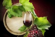 Rome wine tasting tour