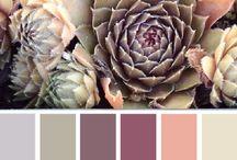 Farbfroh und Bunt