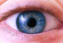 Eyes and Eye Care