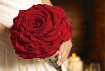 carmen bouquet