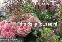 Toussaint votre fleuriste à Narbonne