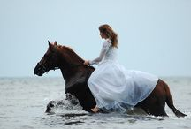 For the Love of Horses! / by Marianela Holmes