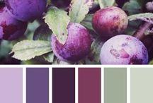 צבעים השראה / השראה לשילובי צבעים -  השראה ורעיונות  - לפגישת יעוץ עיצוב ניתן   להתקשר 052-3737055