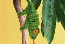 Chameleons craft