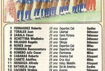 Paraguay (1)Mex86