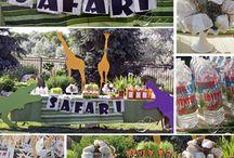 Safari / by Liz Finch