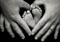 Babies! / by Noelle Tollefson