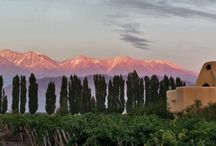 Luxury South America / by Luxury Trips