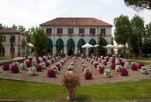 Abano Terme - Italy / Abano Terme and Montegrotto Terme represent the most ancient and important thermal center in Europe