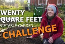 Sara's Vegetable Garden challenges / Videos to inspire to grow a kitchen garden on 20 square feet. How to start becoming self-sufficient on vegetables.