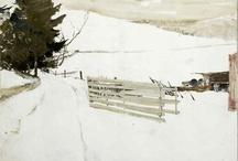Andrew Wyeth / by Carol Ann Simmonds