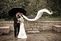 Wedding - Windy
