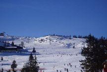 Skiën Flachau♥ / by Marith Pelle