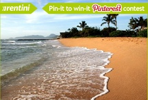 Pin It To Win It (Pinterest Contests)