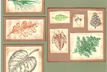 SU Fantastic Foliage & French Foliage / These leaves from these two Stampin' Up! stamp sets are complimentary and can be combined or used separately.
