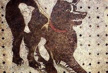 Dogs : Ancient Rome