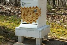 Bienenstock Honig - Miele Api