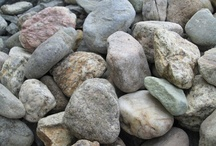 Rockin' / by Carolyn Edsell-Vetter