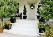 Curb Appeal / by Harmony Beckman