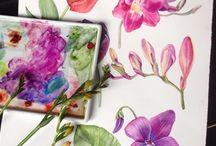 Aaqua flowers