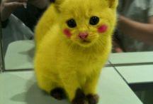 Actually-cute. / by Joanie Reid