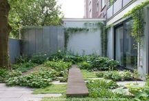 Carolien Barkman garden