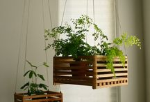 wooden plant holders