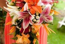 wedding bouquets / by Joan Mclain