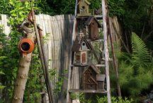 Bird houses onb
